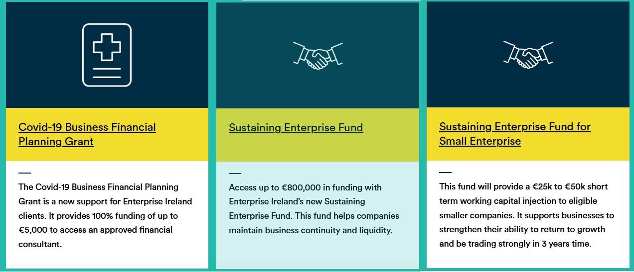 Enterprise Ireland Covid 19 response